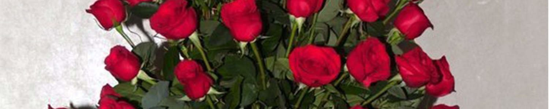 Rose in Grecian Vase